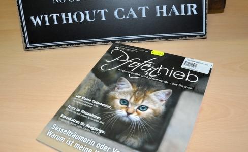 Wegweiser Katzenfutter: Artgerechte Nahrung für Stubentiger (German Edition)